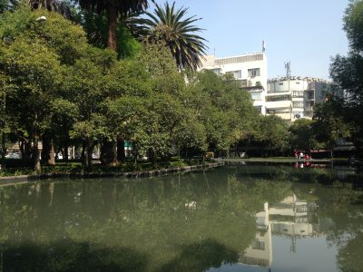 where to go in polanco