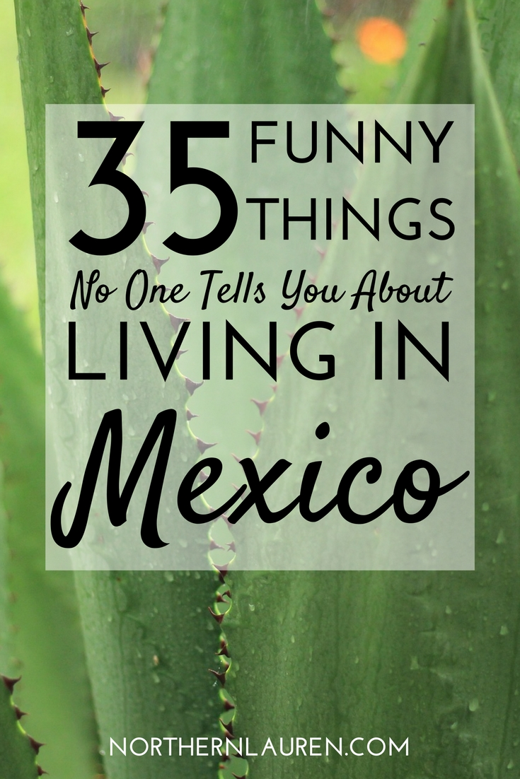Living More 35 things no one tells you about living in mexico northern