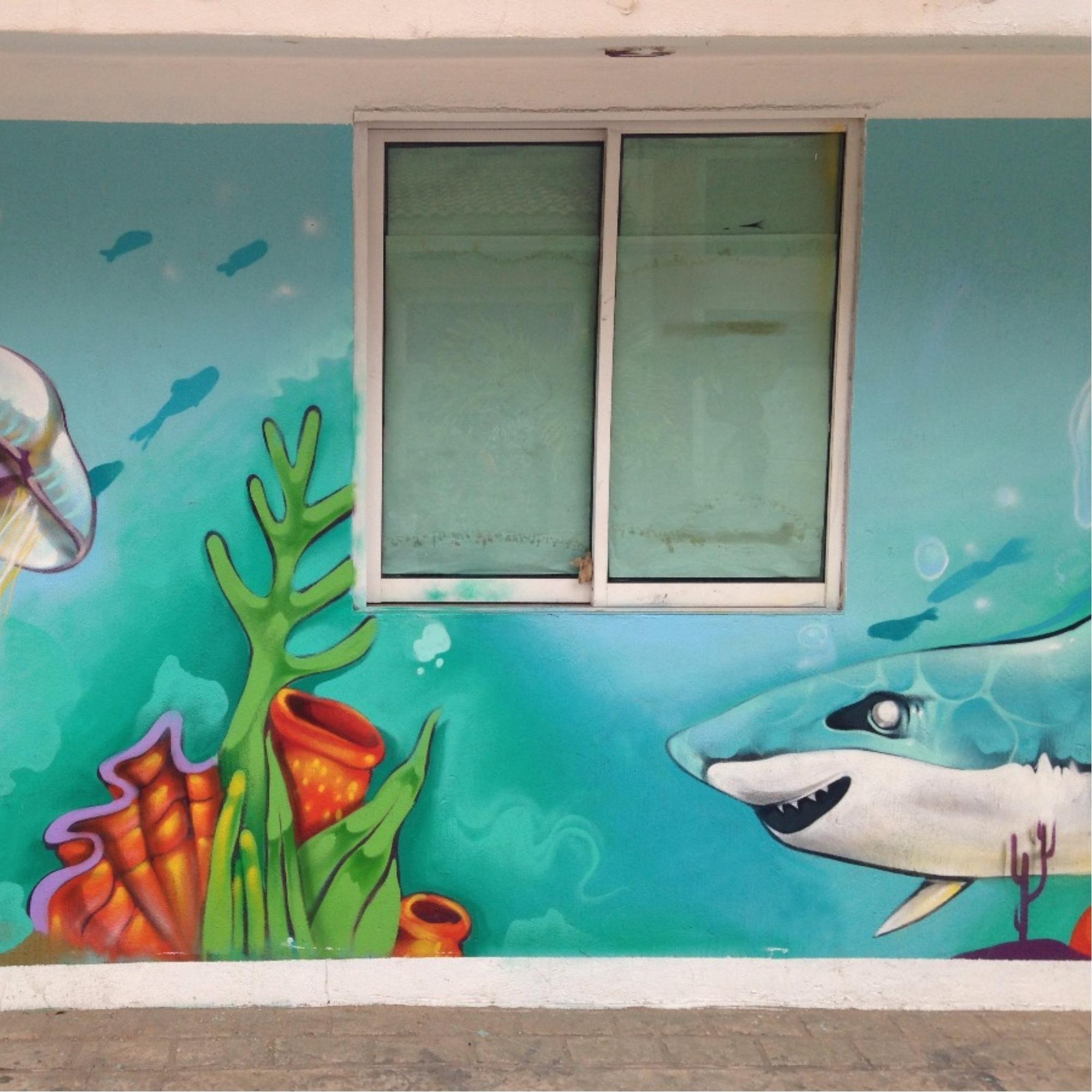 street art in puerto vallarta